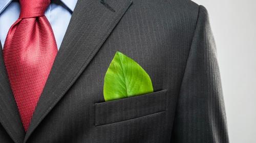 Meer concurrentie groene beleggingen