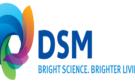 Recordjaar zet aandelenkoers DSM 9% hoger
