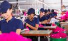 Wat is viezer: productie kleding of plastic