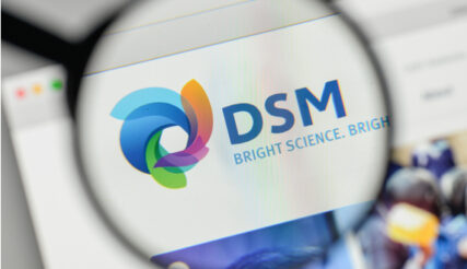 DSM mist daadkracht